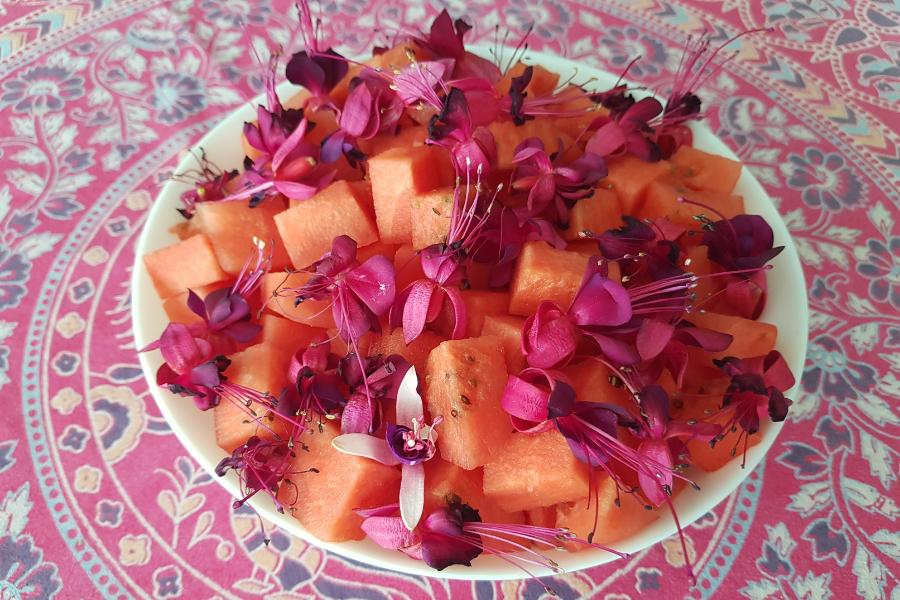 Wyserwowana w talerzu sałatka z pokrojonego w kostkę arbusa, posypana kwiatami fuksji.